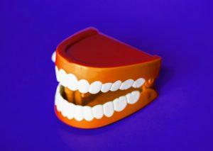 periodontist tampa